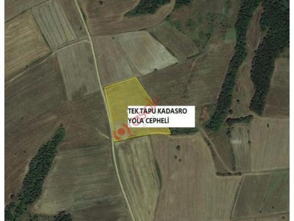 13.000 m² Tek Tapu