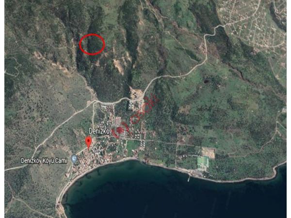 İzmir Dikili'de 233 Dönüm Arazi