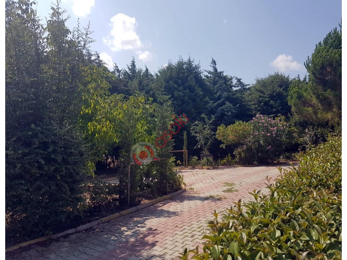Silivri Ortaköy'de Satılık Çiftlik - Büyük 9