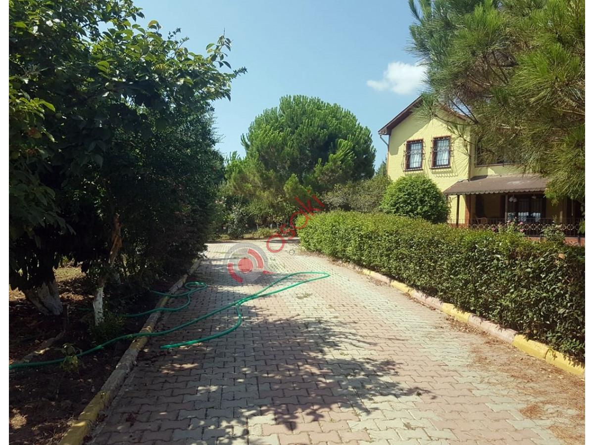 Silivri Ortaköy'de Satılık Çiftlik - Büyük 7