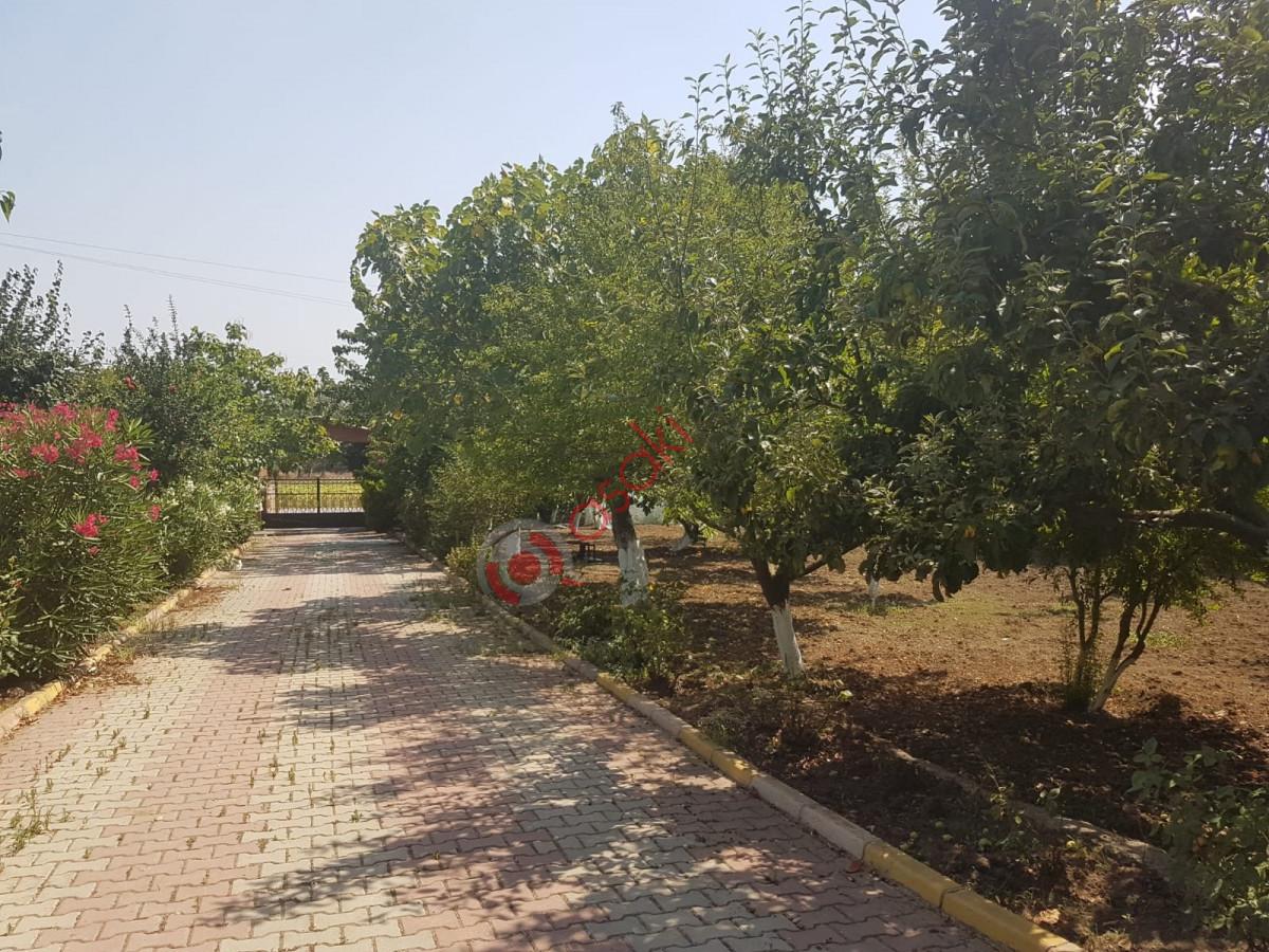 Silivri Ortaköy'de Satılık Çiftlik - Büyük 8