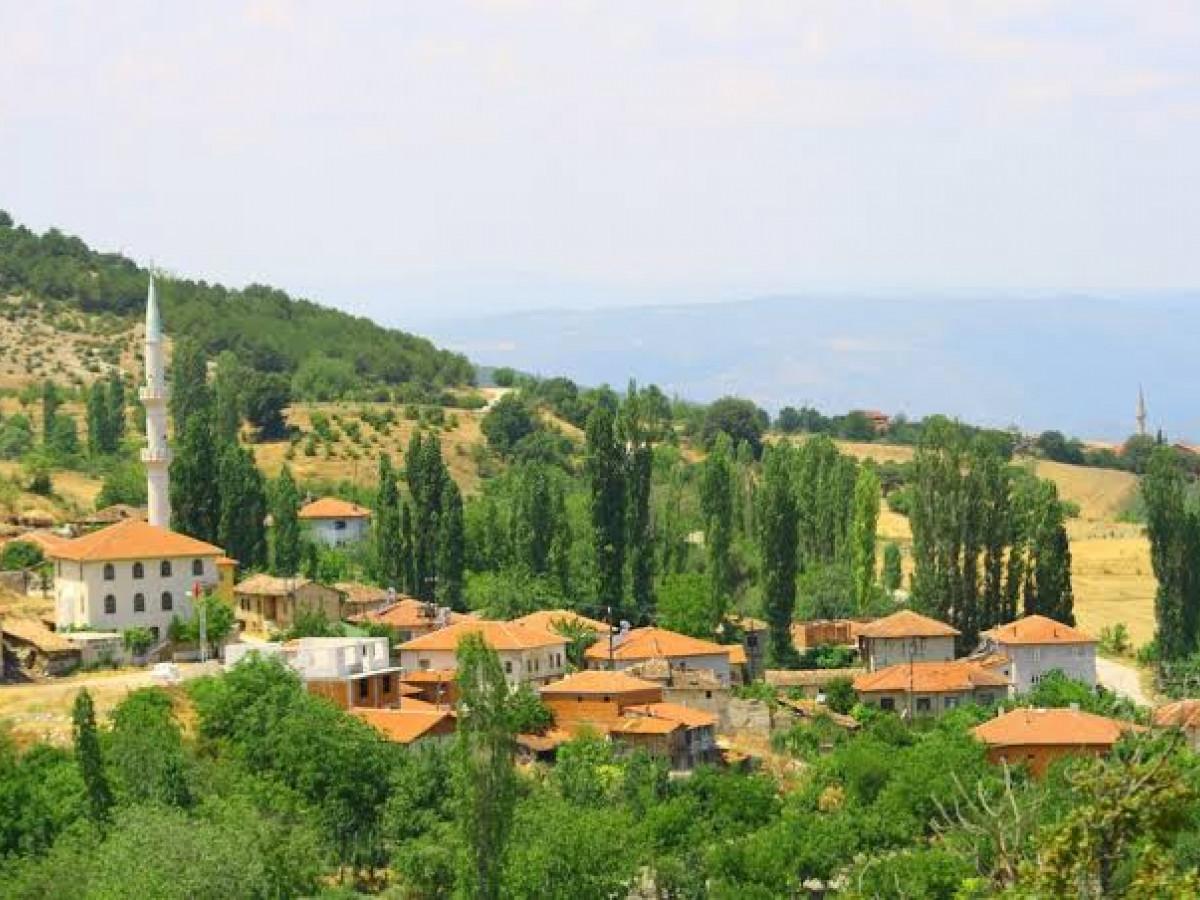Bilecik Bayat Köyün'de 755 m² Satılık Tarla - Büyük 0