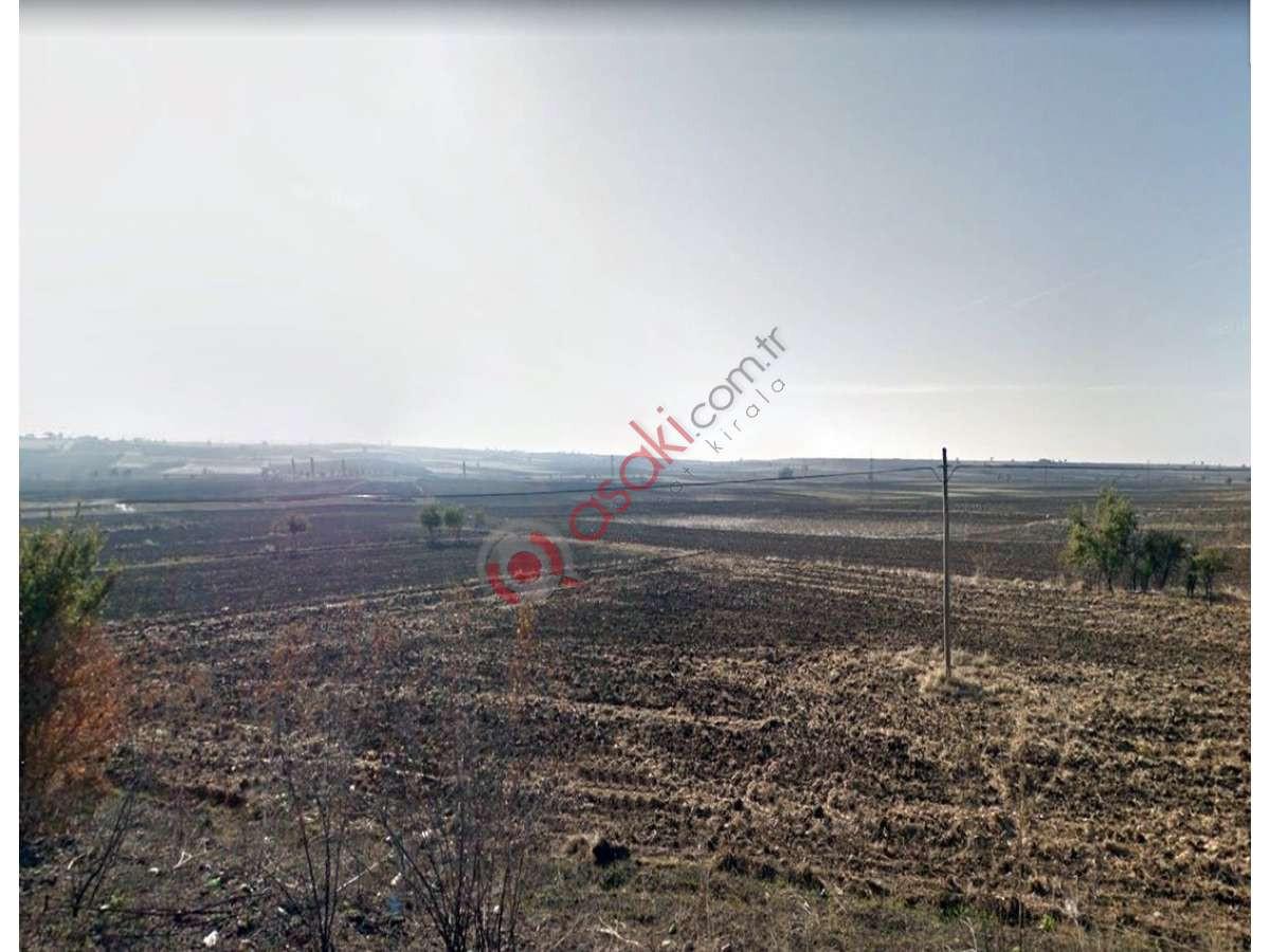Pınarhisar Erenler Köyünde Satılık Tarla - Büyük 0