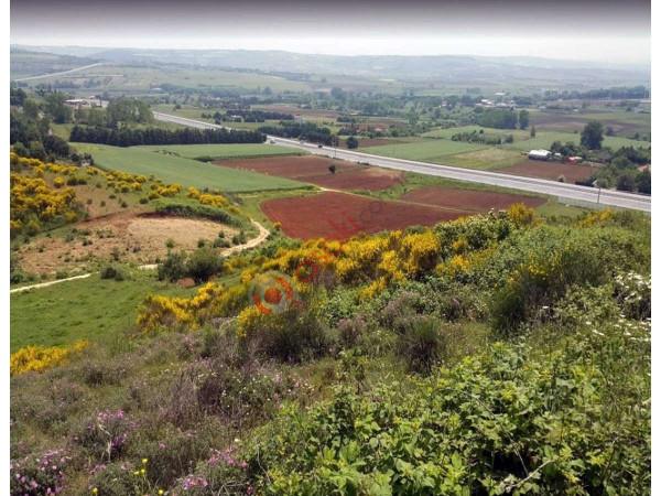 çatalca Kestanelik Köyü'nde 14800 M² Satılık Arazi