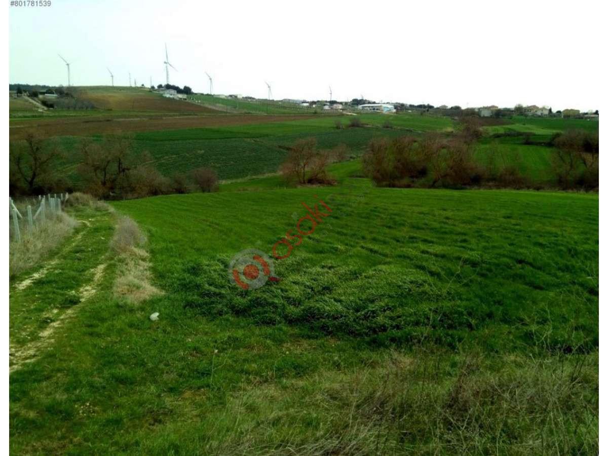 çatalca Elbasan'da 3.400 M² Satılık Arazi - Büyük 0