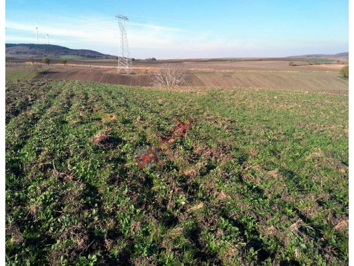 Silivri çantaköy'de Tek Tapu Satılık Arazi - Büyük 0