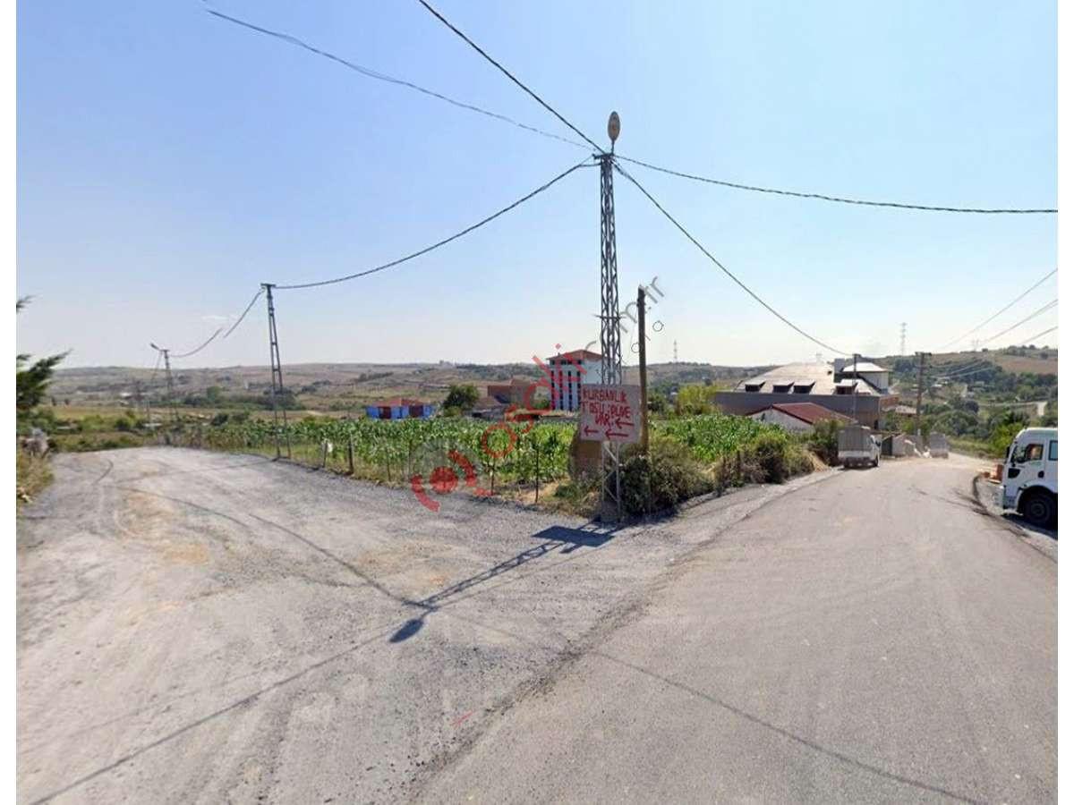 Arnavutköy Taşoluk'ta 4500 M² Imarlı Arsa - Büyük 0