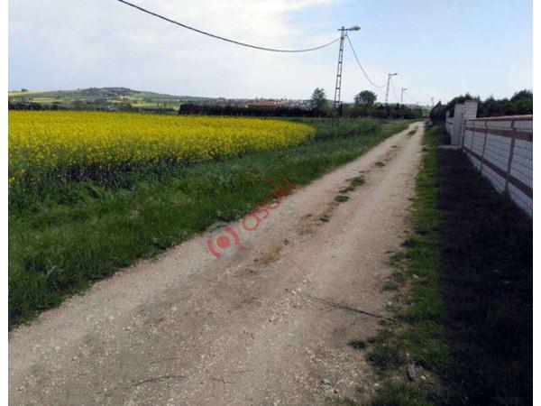 Silivri Gazitepe Köyünde Satılık 10150 M² Tarla