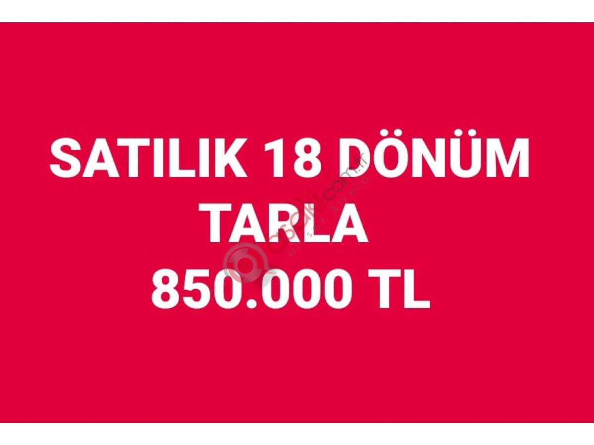 Silivri Seymen de Satılık 18 Dönüm Tarla  850.000 Tl - Büyük 0