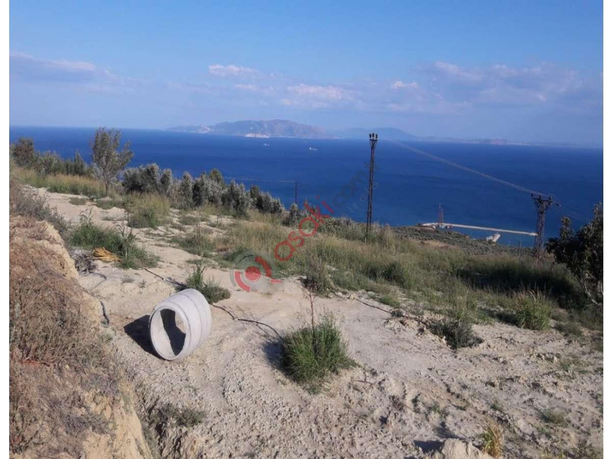 Tekirdağ şarköy'de Satılık Bağ & Bahçe - Büyük 0