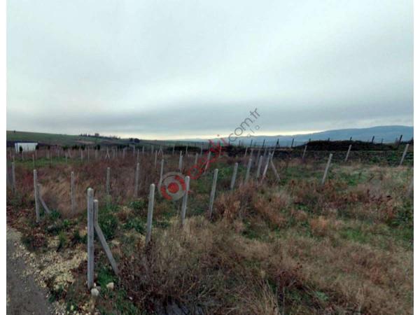 çatalca Subaşı'nda Satılık 6.450 M² Satılık Arazi