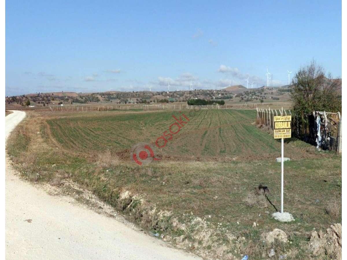 Silivri Değirmenköy'de Kaçırılmayacak Lokasyonda  Arsa - Büyük 0