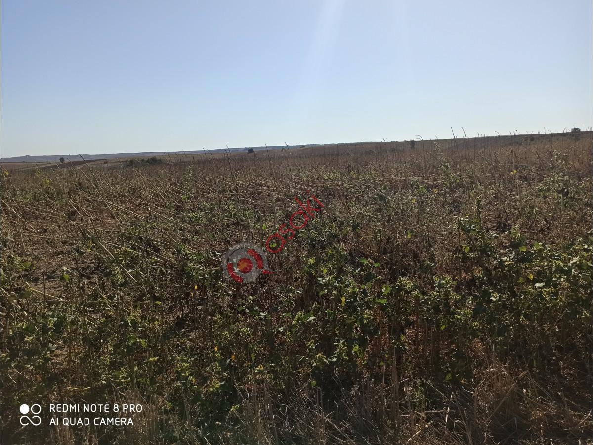 Silivri Değirmenköy de Araç Takası Veya Daire Takası Olabilir Satılık Tarla - Büyük 1
