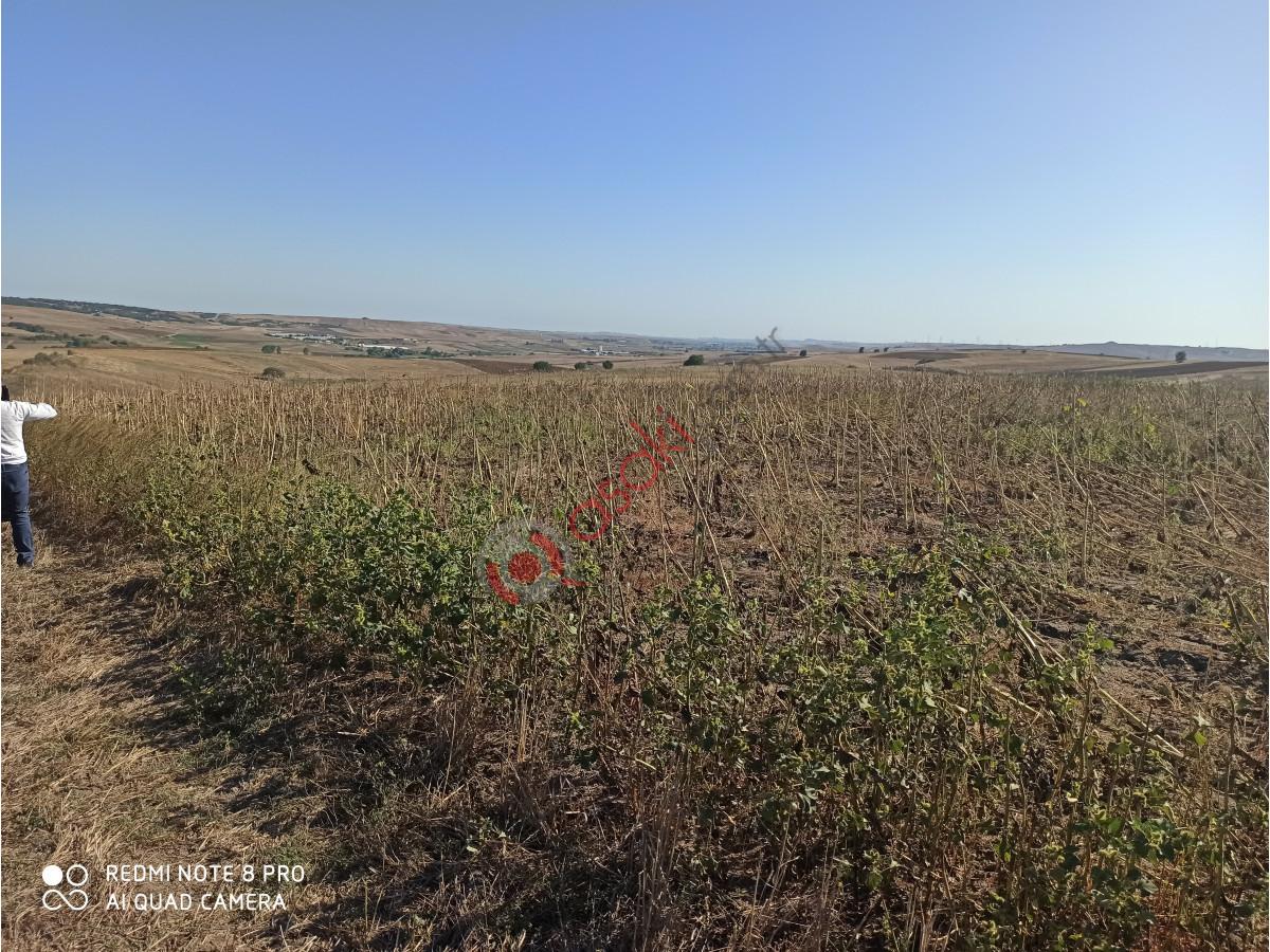 Silivri Değirmenköy de Araç Takası Veya Daire Takası Olabilir Satılık Tarla - Büyük 3