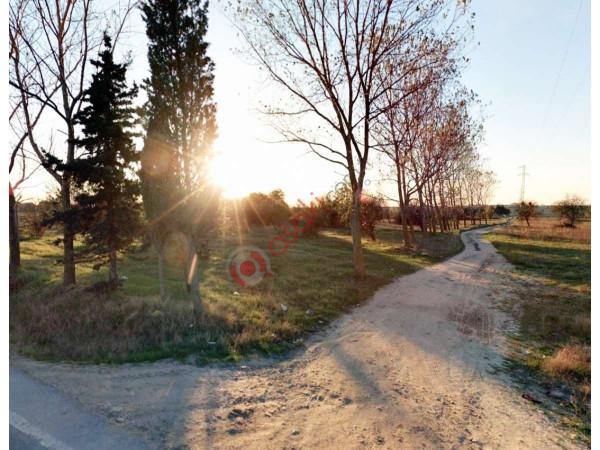 Silivri Büyükçavuşluda 5 Dönüm Satılık Arazi