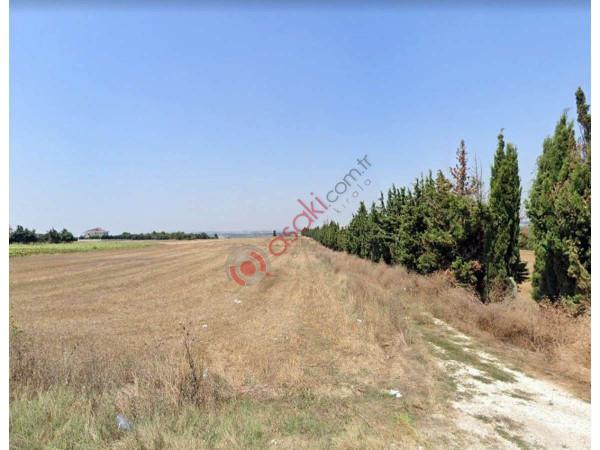 Silivri Ortaköy  10 Dönüm Satılık Arazi