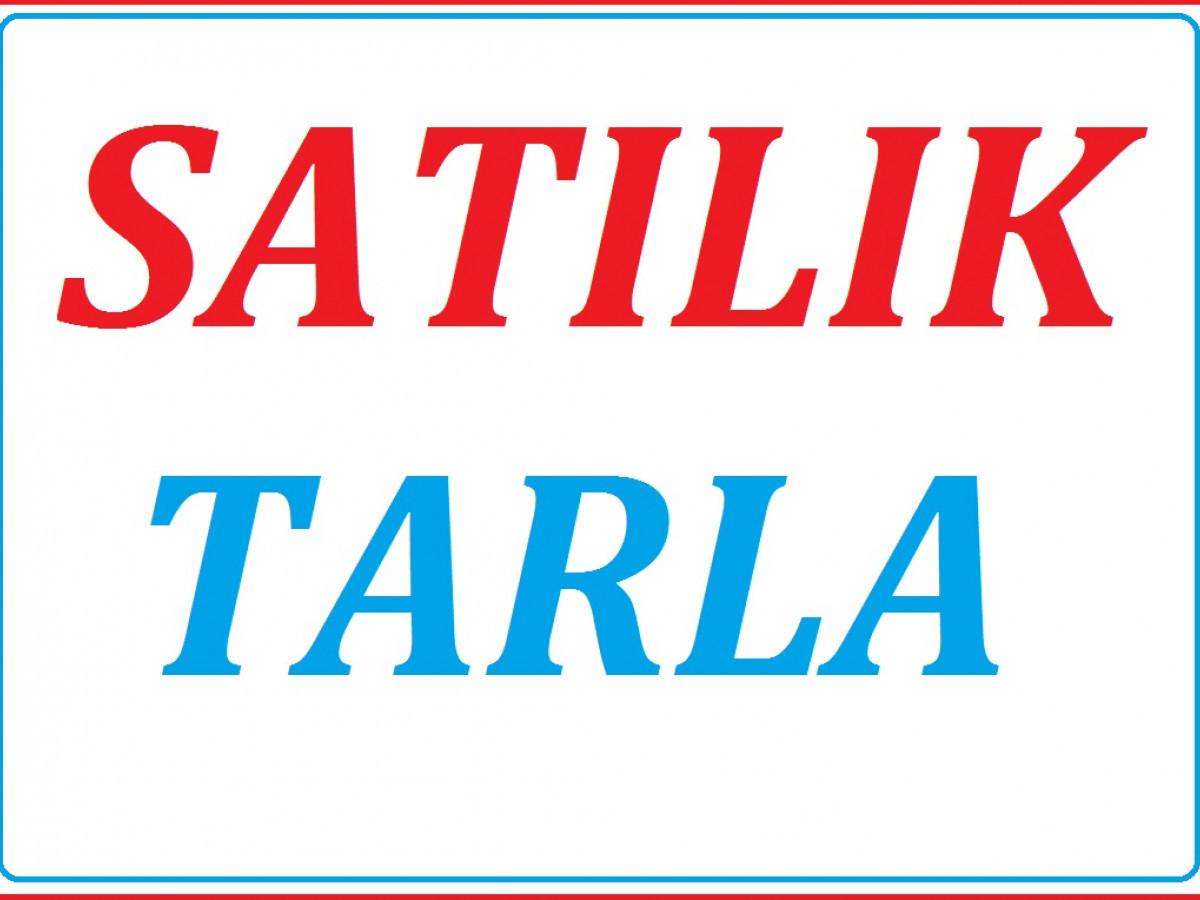 Silivri Değirmenköy'de 4 Dönüm Acil Satılık Tarla 270.000 Tl - Büyük 0