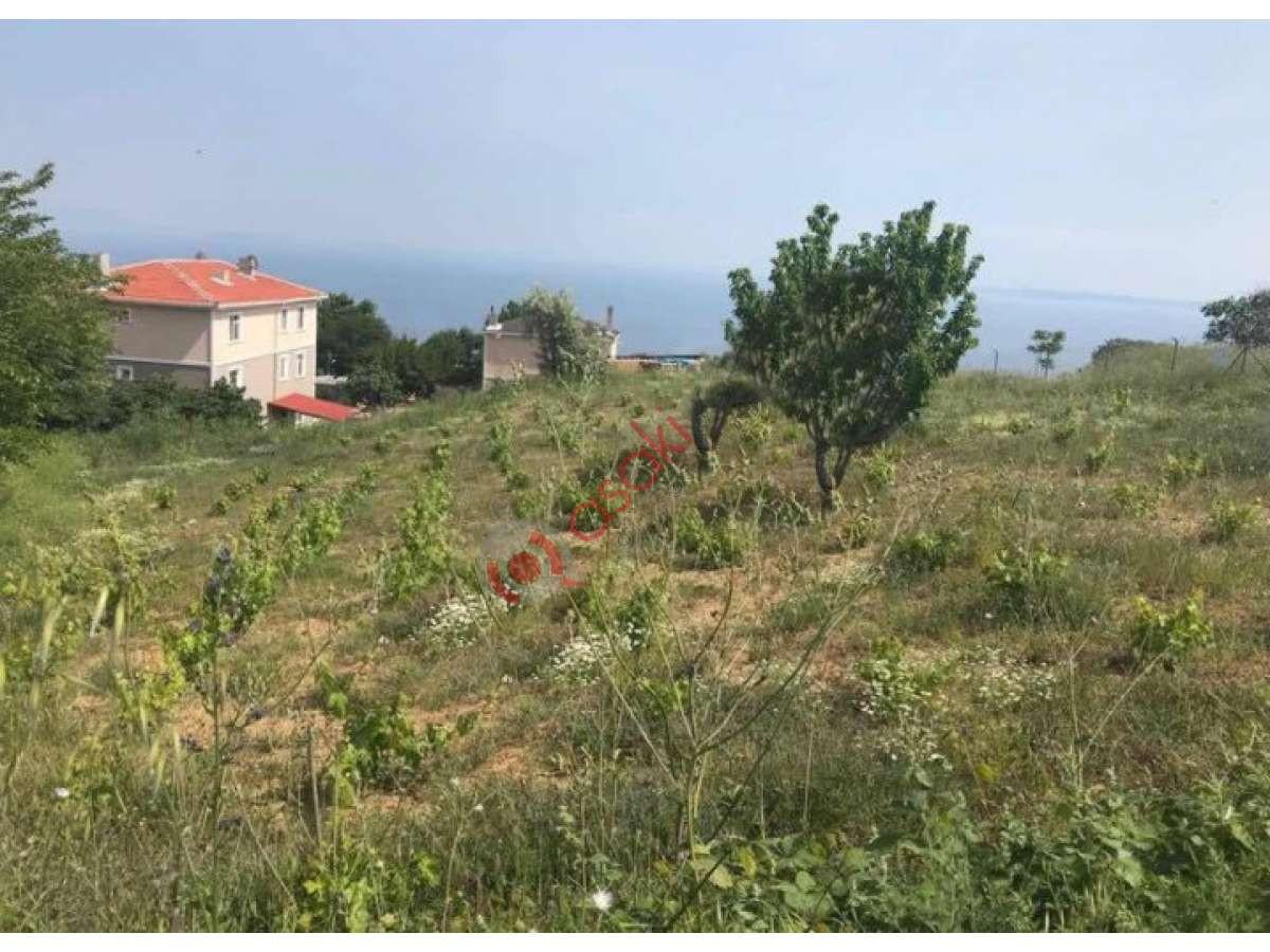 şarköy'de Satılık 1.200 M² Villa Arsası - Büyük 0