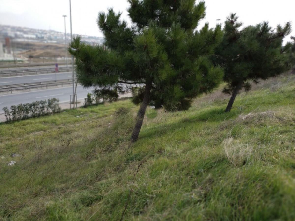 Yakuplu liman yolunda TİCARİ ARSA - Büyük 1