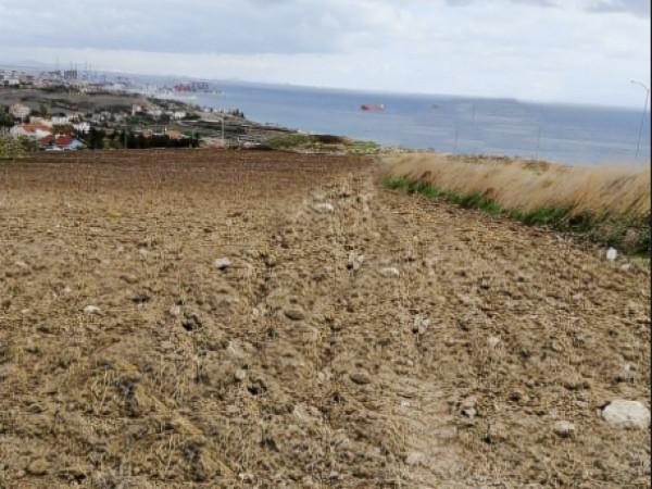 Gürpınar'da Satılık Deniz Manzaralı Villa Arsası