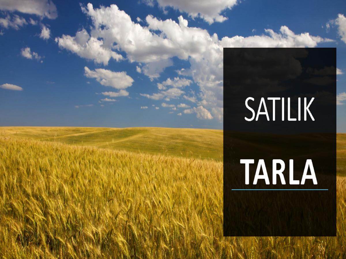 Silivri Araplı Çiftliğinde Satılık Tarla - Büyük 0