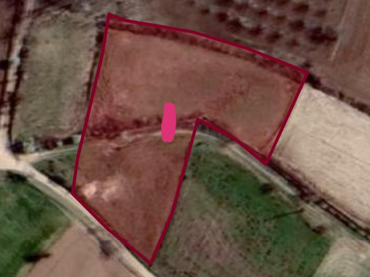 kırklareli merkez koyunbaba'da 5.480 m2. tarla 150.000 tl. - Büyük 1