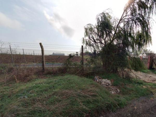 Silivri Kadıköyde Satılık Kurulu Bahçe